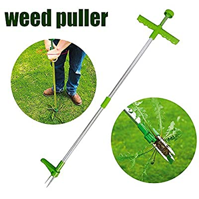 Kimica Stand Up Weeder, Manual Weed Puller Root Removal Tool with 3 Claws - Hand Weeder Gardening Tool Stainless Steel