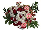 Edelweiss GJ Flowers Passion Red Spray Rose Bouquet 33 Stems, 24 Inches Long, with Vase (Fresh Cut Flowers)