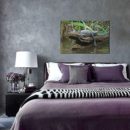 TISAGUER Druck Auf Leinwand,Louisiana Honey Island Sumpf Amerikanischer Alligator Bayou,Kunstdruck Auf Holz-Keilrahmen Für Schlaf-Und Wohnzimmer Bild 45x30cm