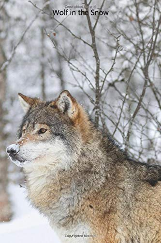 Wolf in the Snow: Portable lined Wolf in the Snow - Travel Journal to write in - 120 pages - 6'x9'