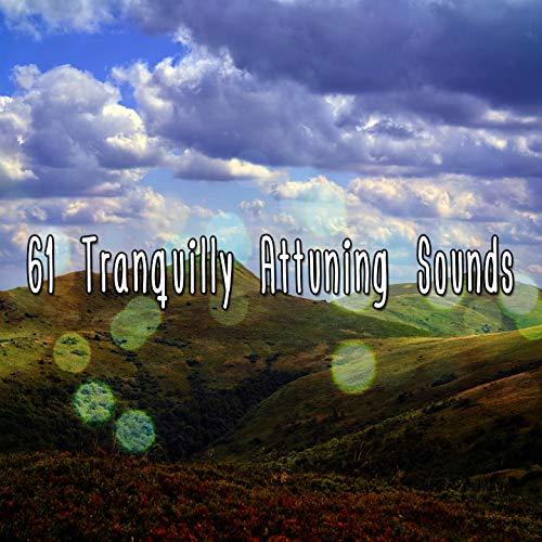 Streaming Serenity