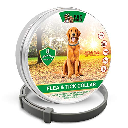 Pet Mob Flea & Tick Collar - Flea & Tick Prevention for Dogs Plus Free Tick Removal Tool ($5 Value!!!)– Repels and Kills Fleas & Ticks - 8 Months Protection -Safe- Natural - Essential Oil