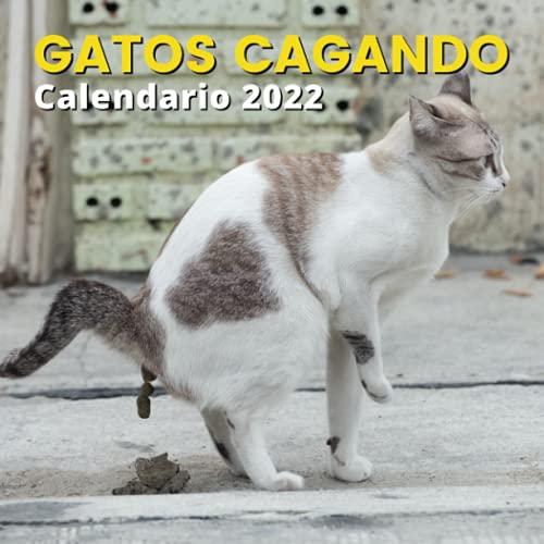 Calendario Gatos Cagando 2022: Regalos Para Amantes De Los Gatos | Regalo de broma | Divertidos Para Mujer, Hombre, Niños, Niñas, Amigas, Amigos, Navidad, Cumpleaños