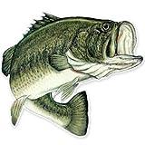 AK Wall Art Largemouth Bass Fishing Fish Vinyl Sticker - Select Size