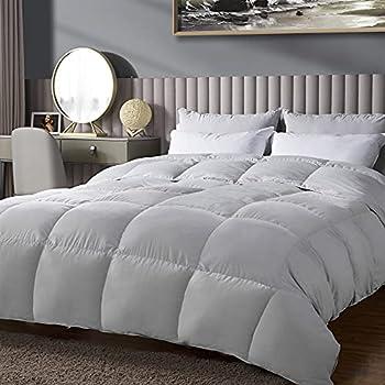 WarmKiss Premium All Season Down Comforter