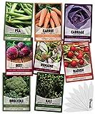 Winter Fall Vegetable Seeds for Planting 8 Varieties Sugar Snap Pea, Carrot, Beet, Radish, Lettuce, Broccoli, Kale, Cabbage Seed Fall Vegetable Seeds Packs by Gardeners Basics