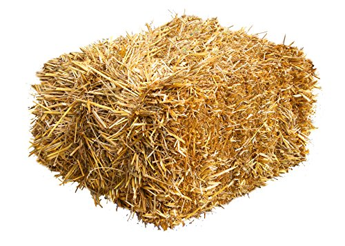 Dekostroh 15kg Heu-Scheune® Strohballen zur Dekoration