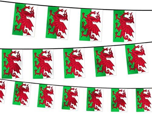 Alsino Wimpel Dekoration Länderwimpel Länderfahnen Wimpelkette Länderflaggen Fanartikel (W-WAL Wimpel Wales 4.50 m)