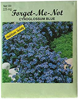 Set of 100 Forget Me Not Valley Green Flower Seed Packets! Flower Seeds in Bulk - Forget Me Nots