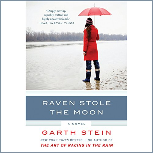 Raven Stole the Moon cover art
