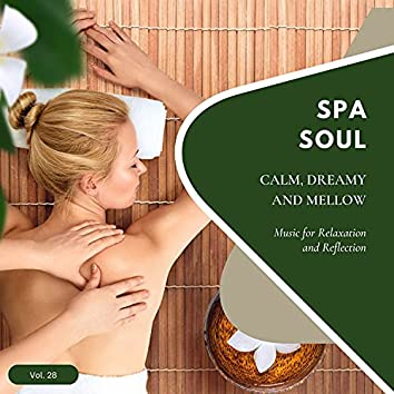 Spa Soul - Calm, Dreamy And Mellow Music For Relaxation And Reflextion, Vol. 28