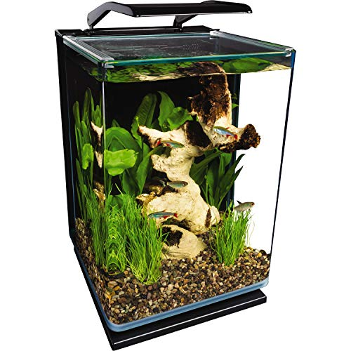 Aquarium With Heater and Filter