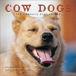Cow Dogs: A Cowboy's Best Friend