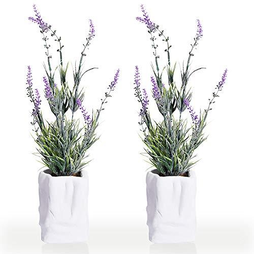 New rui cheng Pflanze Künstliche, Kunstliche Pflanzen Mini Kunstpflanzen Gefälschte Künstliche Pflanze Echt Lavendel Blumen im Zement Topf 2Stück Kleine für Balkon Bonsais Büro Badezimmer Zuhause Deko