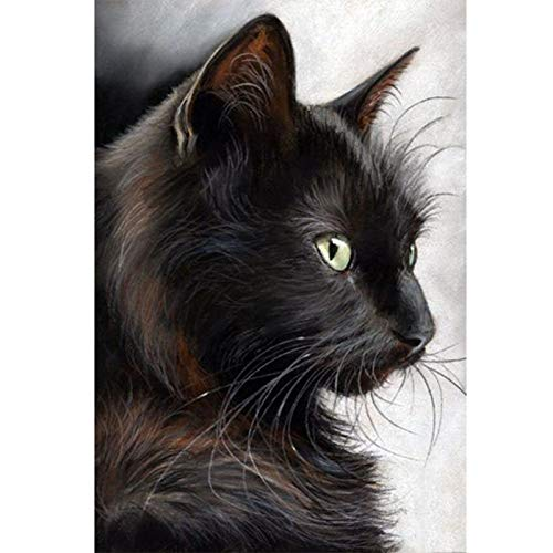Diamond Painting Kits for Kids,5D DIY Diamond Painting by Number Kits for Home Decor Black Cat 11.0x15.0 in by Megei