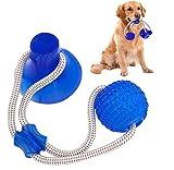 Suprcrne Haustier Spielzeug, Selbstspielende Gummiball Spielzeug mit Saugnapf Hund kauen Seil Ball Spielzeug Interaktives Welpentrainingsseil Für die Zahnreinigung (Blau)