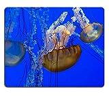 (Alfombrilla de ratón con costura de precisión) Alfombrilla de ratón Alfombrilla de ratón para juegos Alfombrilla de ratón de goma natural Juego de medusas Acuario de la bahía de Monterrey Juego de ma