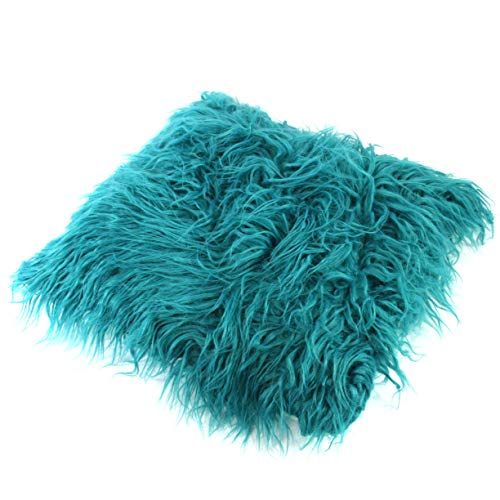 Black Ginger Fluffy Furry Cushion Cover and Insert - Teal