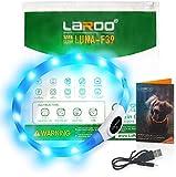 LED Hunde Halsband, LaRooTM Blinkende Leuchtendes LED Sicherheit Halsbänder