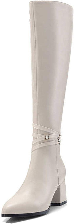 Summer-lavender Knee high Boots Women Boots Warm Autumn Winter Boots high Heels