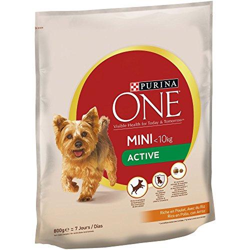 Purina ONE MINI Active Pienso para Perro Adulto Pollo y Arroz 8 x 800 g