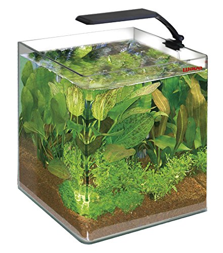 Wave Acquario Box Cubo 25 Orion