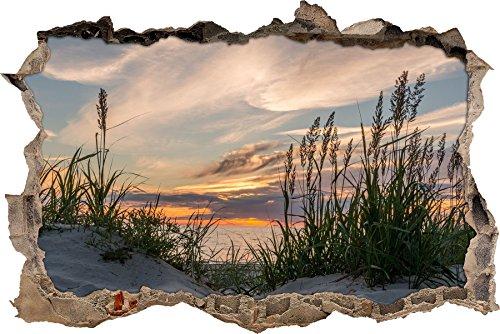 Pixxprint 3D_WD_S2407_92x62 ruhige Graslandschaft am Meer Wanddurchbruch 3D Wandtattoo, Vinyl, bunt, 92 x 62 x 0,02 cm