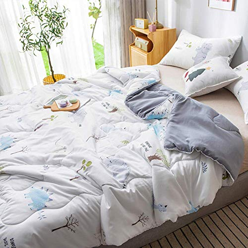 WLD zomerdekbed airconditioning Xia Quilt Air Conditioner was washable-200X230Cm_E 180x200 cm C.