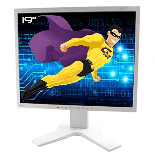 EIZO FlexScan S1902 0FTD1487 - Pantalla LCD TFT VESA VGA DVI 1280x1024 5:4