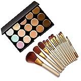 ClubComfort 15 Color Cream Concealer Palette with 12 Make up Brush Set