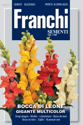 Seeds of Italy Ltd Franchi Muflier géant