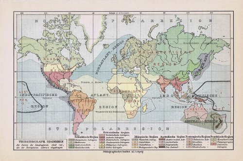 Tiergeographische Regionen der Erde. Historische alte Landkarte (Sammlerstück) von 1929.