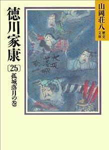徳川家康 25巻 表紙画像