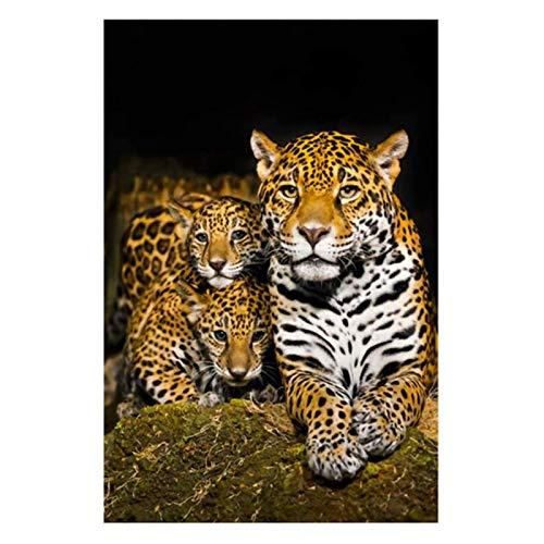 SXXRZA Impresiones de imágenes 70x90cm sin Marco Jaguares Salvajes con Pintura en Lienzo de Jaguar bebé e Impresiones de Carteles Imágenes para la decoración del hogar de la Sala de Estar
