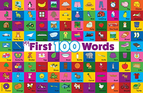 Palace Learning My First 100Words Laminiertes Poster 18 x 27 Laminated