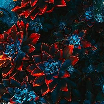 Flowers (Radio Edit)