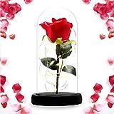 ASANMU Kit de Rosas, Bella y la Bestia Rosa de Seda Roja y luz LED con Pétalos Caídos en Cúpula de Cristal sobre una Base de Madera Mejor Regalo para Día de la Madre, día de San Valentín, Cumpleaños