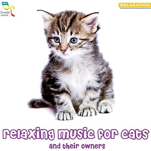 Oreade Music: Relaxing Music for Cats and Their Owners
