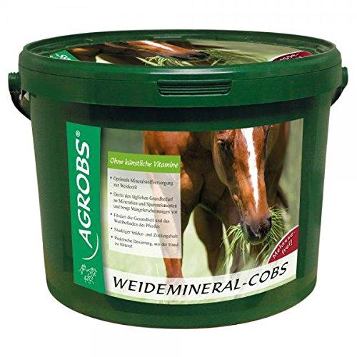 Agrobs Weidemineral-Cobs, 1er Pack (1 x 10000 g)