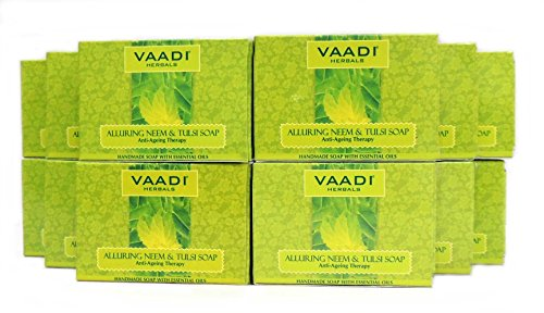 Neem Soap (Neem Tulsi Bar Soap) with Aloe Vera Extracts, Vitamin E and Tea Tree Oil - ALL Natural - Best Anti-aging Therapy - Each 2.65 Ounces - Pack of 12 (32 Ounces, 2 Lb) - Vaadi Herbals