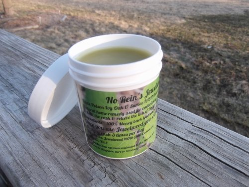 No Reins Jewelweed Salve 4oz jar Poison Ivy Oak and Sumac