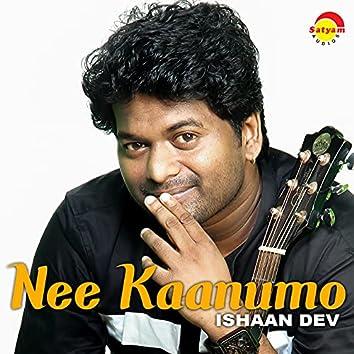 Nee Kaanumo (Recreated Version)