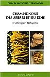 Champignons des arbres et du bois : Les principaux pathogènes - Guide de diagnostic et...