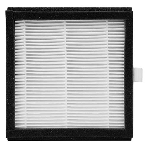 Best Deals! Afloia HEPA Filter for 2-In-1 Dehumidifier and Air Purifier In One (AQ8)