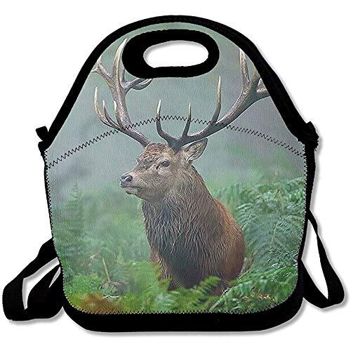 Voedsel voor het opbergen van tassen voor lunchboxen voor school in de open lucht.
