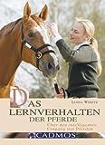 Das Lernverhalten der Pferde - Linda Weritz