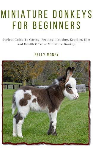 what is a mini donkeys diet