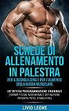 schede di allenamento in palestra per il bodybuilding e per l'aumento della massa muscolare: un'intera programmazione triennale (forma fisica, addominali, definizione, perdere peso, dimagrire)