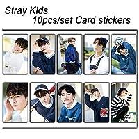 10ピース/セットストレイキッズKPOP写真カードステッカーアルバム粘着性接着剤kpopストレイキッズロモカードフォトカードステッカーSKD00705