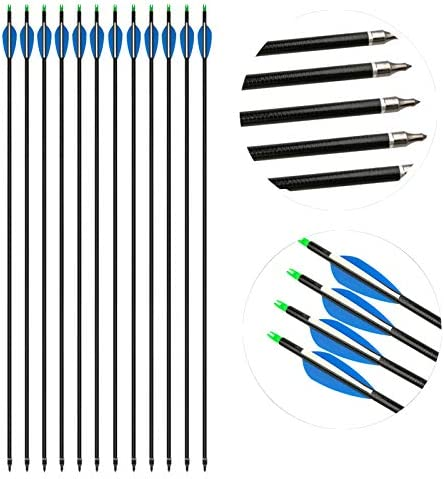 AMEYXGS 31Inch Archery Fiberglass Arrows Target Practice Arrows with Arrow Tips and Arrow Quiver for Recurve or Compound Bow Outdoor Shooting
